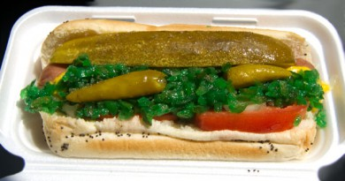 Big City Dogs Davie Chicago Dog